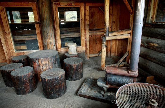 Обеденным столом и стульями в доме служили обычные пни.