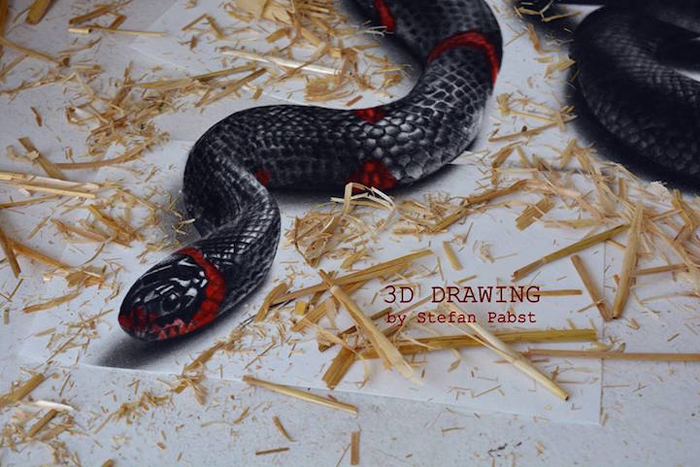 Нарисованная змея.