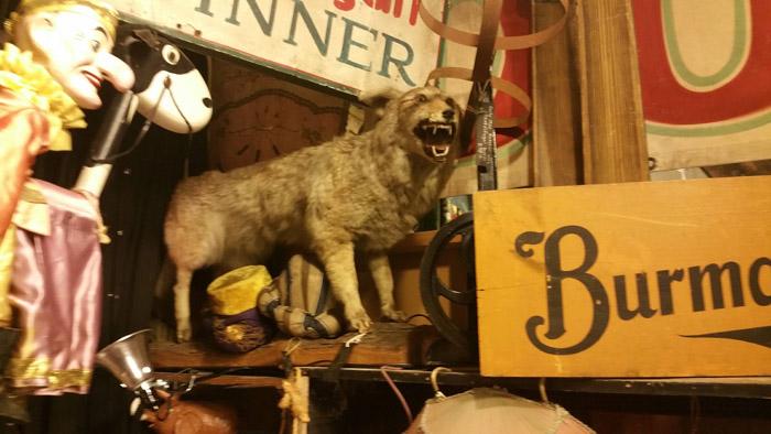 Возможно, это собака. Возможно, это ночной кошмар воплоти.