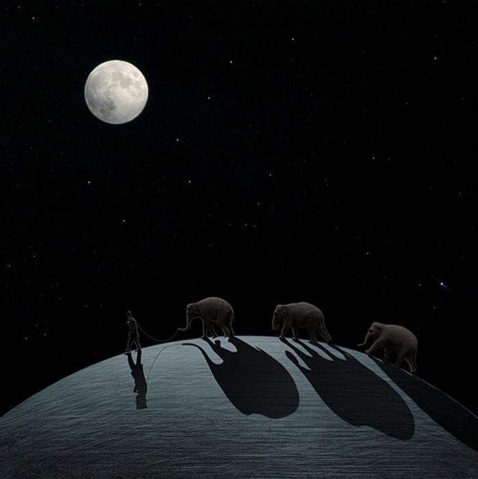 Выгуливая своих слонов.