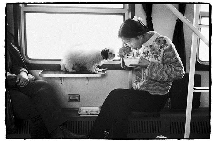 Обед.  Фото: Wang Fuchun.
