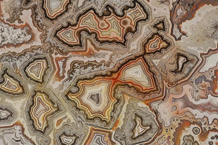 Невероятные рисунки природы.