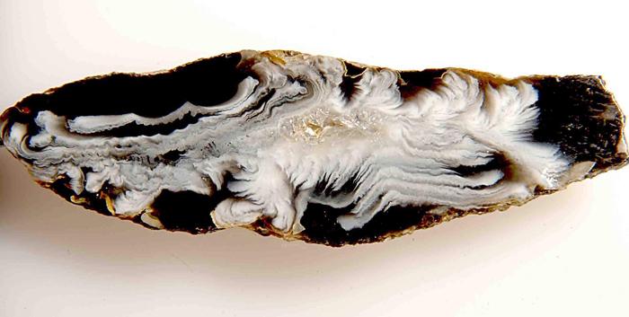 Черно-белый агат. Фото: Н.А. Колтовой.