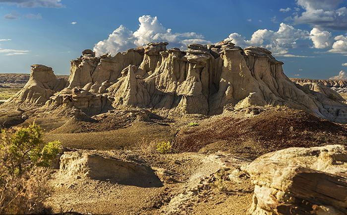 В Пустыне можно найти окаменелости. Фото: Alex Mironyuk.