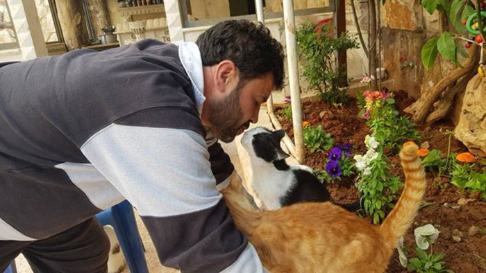 Мохаммед кормит котов.
