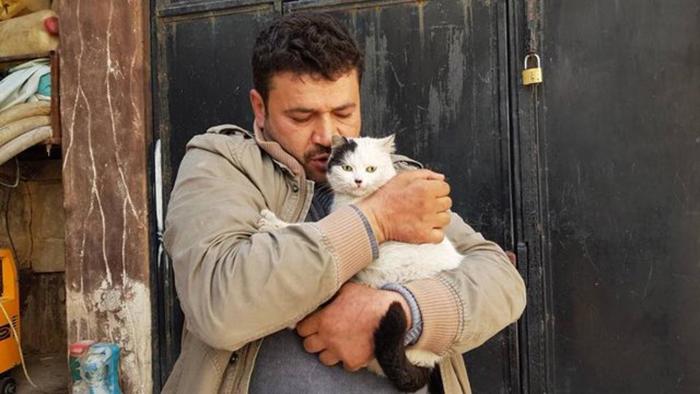 В приюте Il Gattaro D'Aleppo.