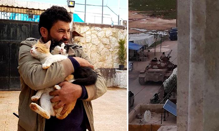 Мохаммед Джалил — человек, который заботится о животных в одной из самых опасных точек земли