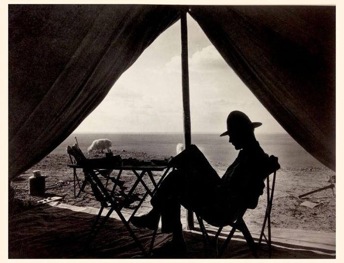 Рой Чепмен Эндрюс у себя в палатке.
