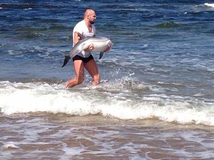 Мужчина на пляже заметил маленького дельфина, который по ошибке выбросился на сушу и не мог понять, в какую сторону следует передвигаться. Человек отнес на руках животное на глубину, где отпустил его.