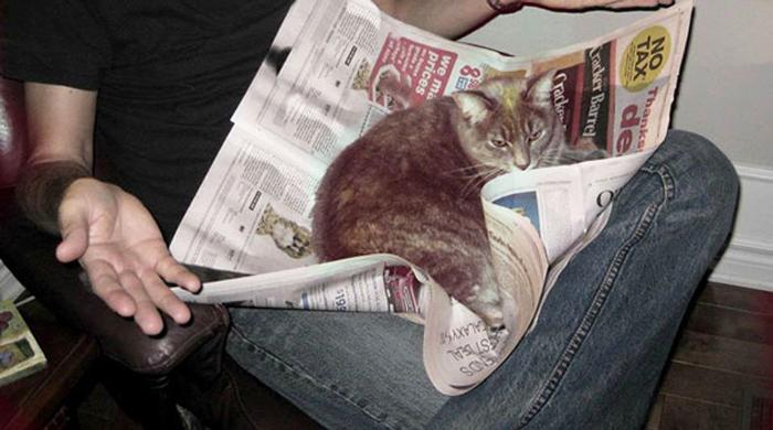 Новости он читает, как же...