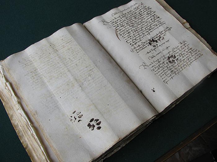 Страницы испорчены, видимо, котом 15-го века.
