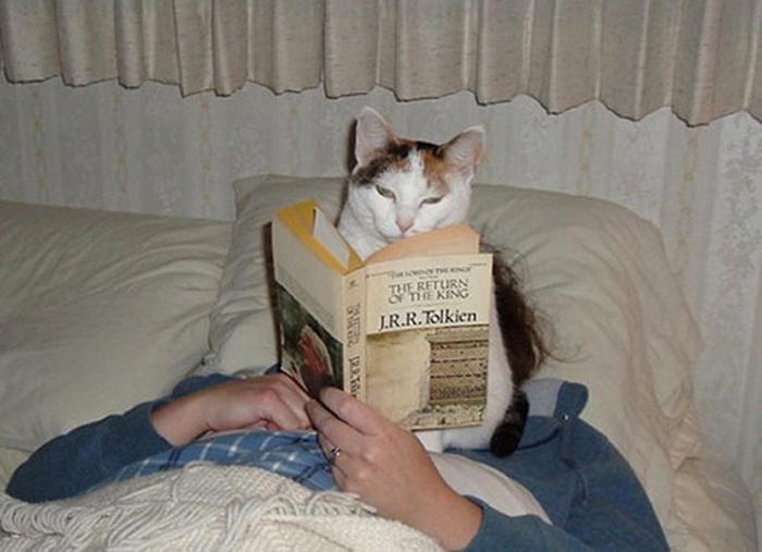 Можешь не читать, я тебе сама все прочитаю!