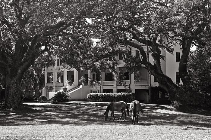 Гостинница Грейфилд Инн является единственным отелем на острове.  Фото: Anouk Masson Krantz.