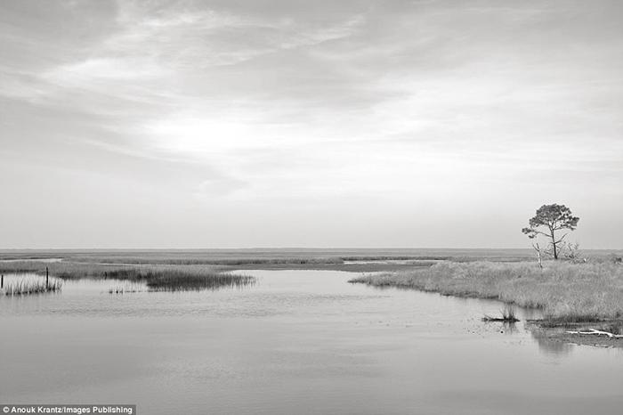 Берег острова представляет собой огромный песчаный пляж.  Фото: Anouk Masson Krantz.