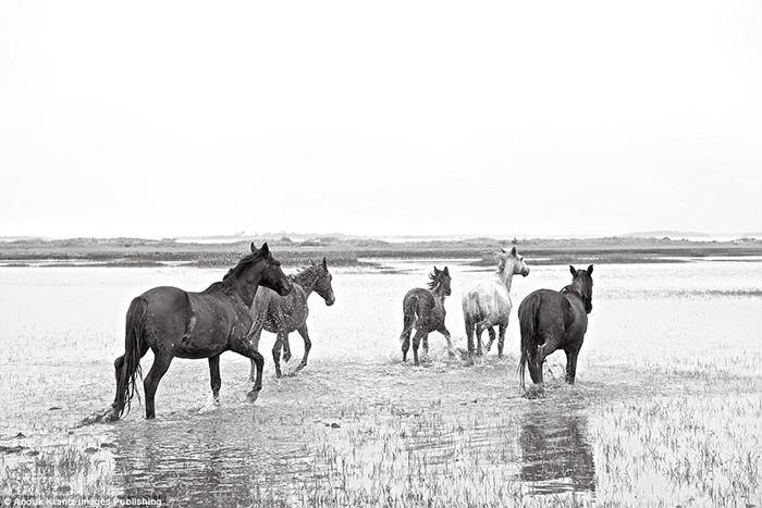 С 1972 года остров стал Национальным Парком. Фото: Anouk Masson Krantz.