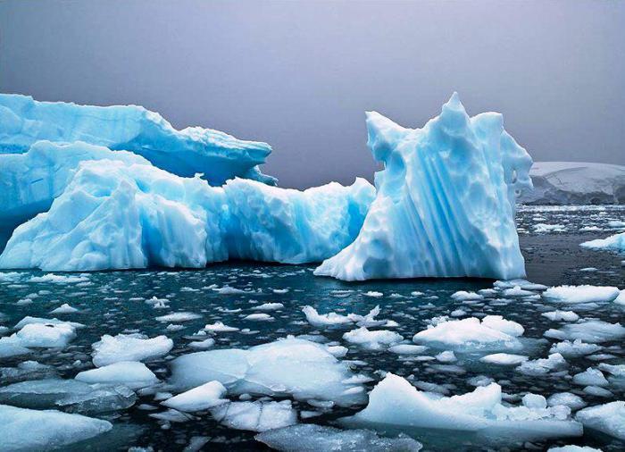 Лед в океане.