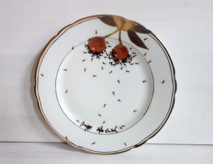 Тарелка из набора винтажной посуды, декорированной Эвелин Браклоу.