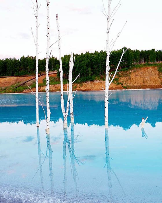 Деревья в озере и на его берегах погибают из-за повышенной солености почвы. Instagram maldives_nsk.
