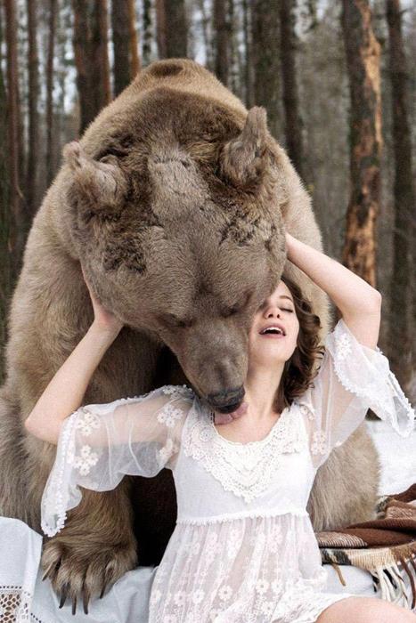 Огромный медведь вырос в неволе, но окруженным любовью и заботой. Фото: Ольга Баранцева.