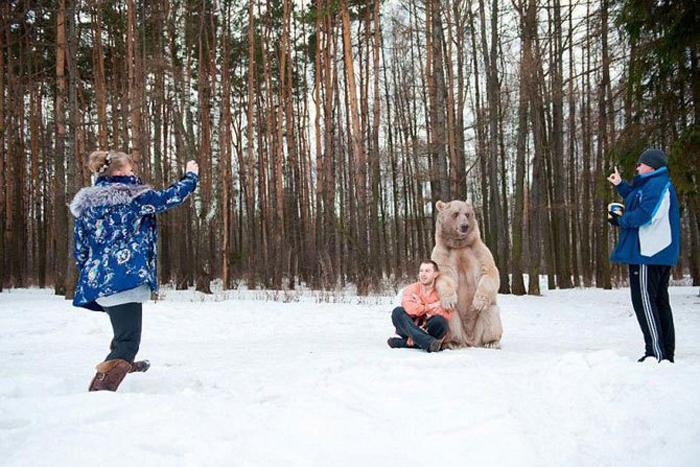 На съемках обязательно присутствует хозяин медведя. Фото: Ольга Баранцева.