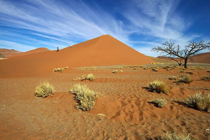 Пустыня.
