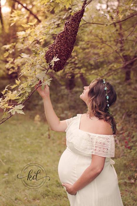 Чтобы пчелы не были агрессивными, их накормили досыта сладкой водой.