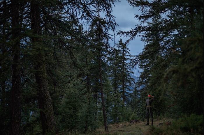 В темном-темном лесу.