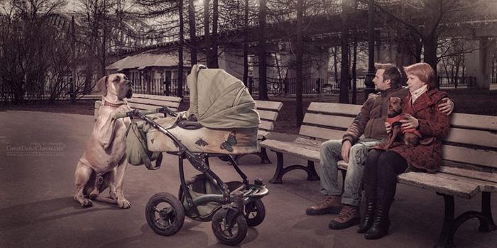Маленькая Алиса (в коляске) и ее няня Шон.  Фото: Andy Seliverstoff.