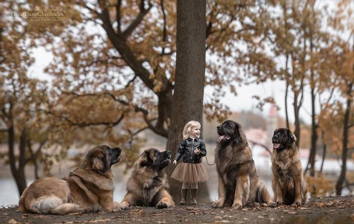 Маленькая Лиза и ее Большие Друзья. Фото: Andy Seliverstoff.