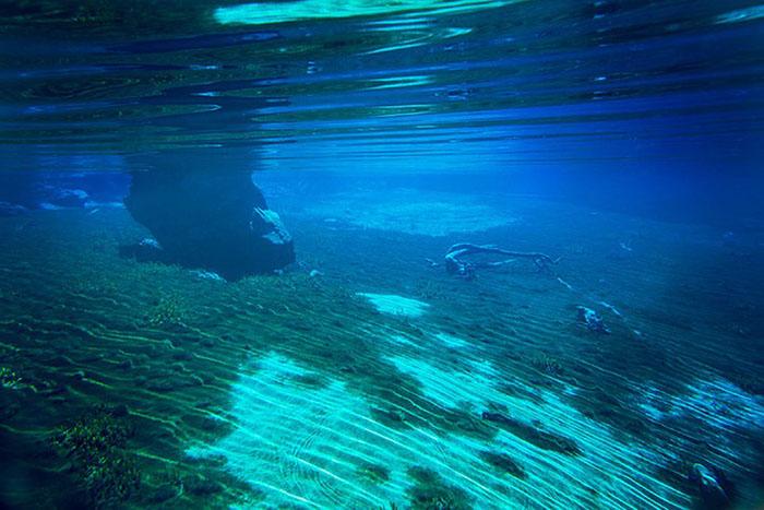 Чистейшая вода новозеландского озера.