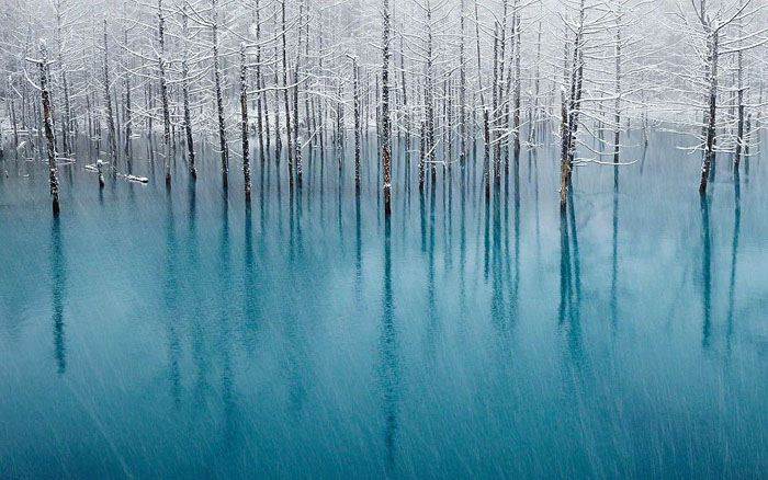 Пруд на Хоккайдо. Фото-победитель конкурса National Geographic в 2011г.
