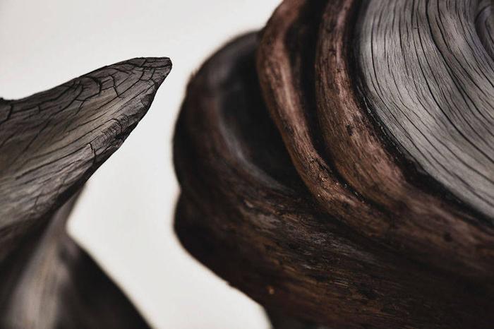 Калифорнийский можжевельник, выращивается с 1985 г.  Фото: Stephen Voss.