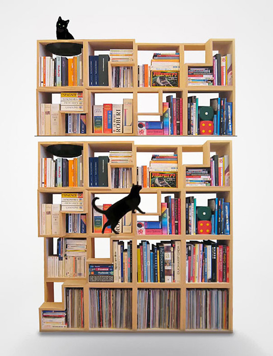 Хорошие книги и коту интересны.