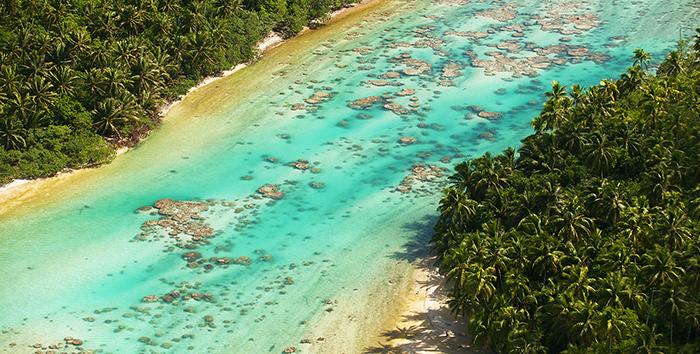Актер поставил себе целью сделать из этого острова доступный рай для человека, не повредив природе.