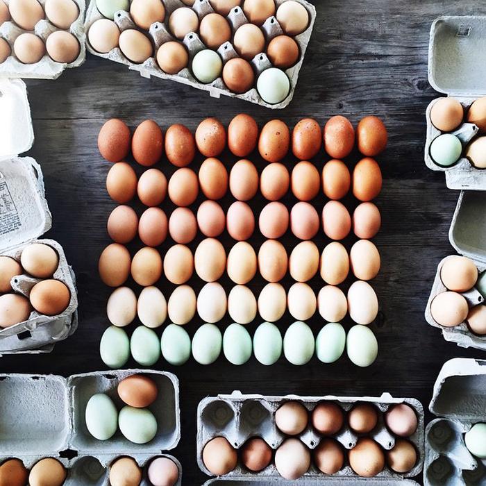 Лоток яиц от Бриттани Райт.