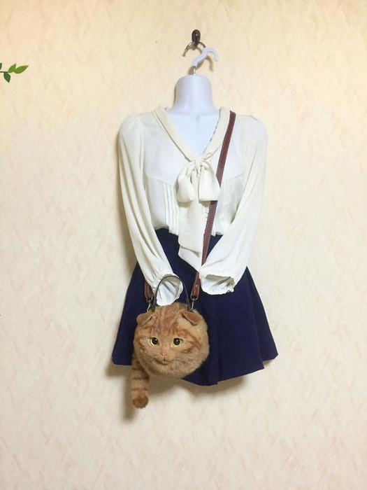 Японский стиль молодежной одежды.