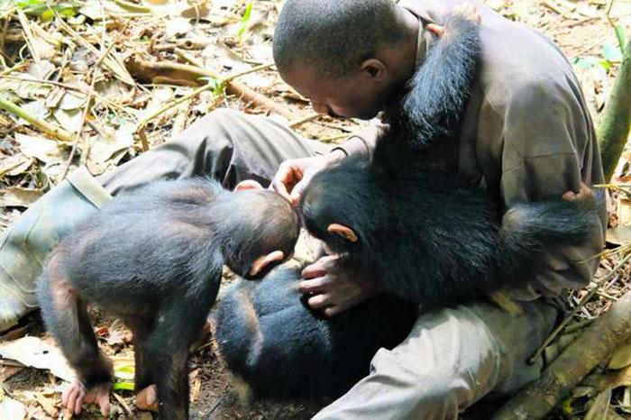 Приют старается помочь обезьянкам вырасти здоровыми и адаптировать их к дикой жизни. Фото: Amy Hanes.