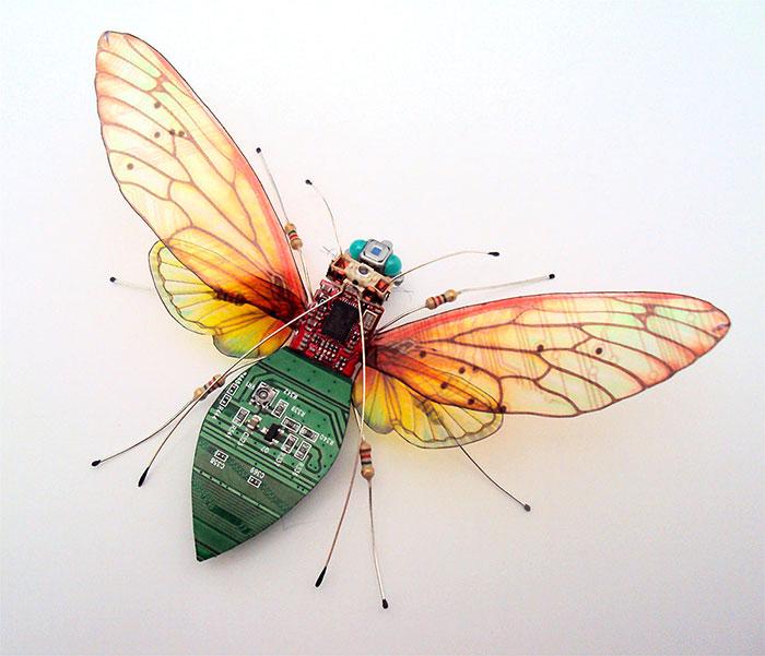 Жук с золотистыми крыльями.  Автор: Julie Alice Chappell.