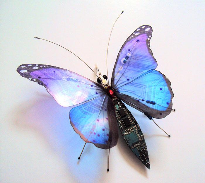 Синяя бабочка.  Автор: Julie Alice Chappell.