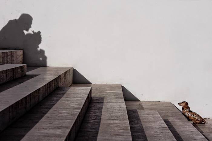 Два одиночества. Автор фото: Stefano Corso.