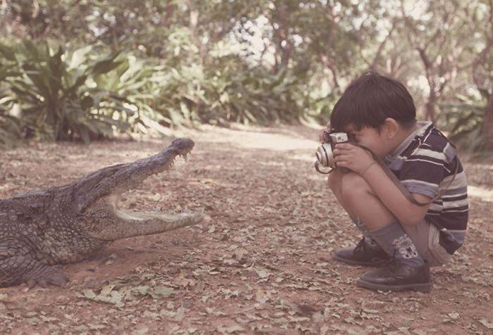 Остается надеяться, что кто-то держит крокодила за хвост.