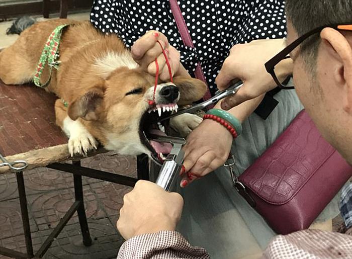 Подобные операции пользуются большой популярностью в Китае.