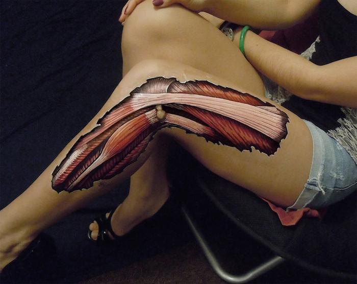 Наглядные иллюстрации по анатомии.