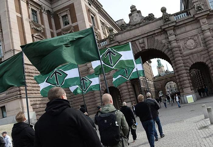 Колонна ультраправой партии Швеции в Стокгольме 2014 год.