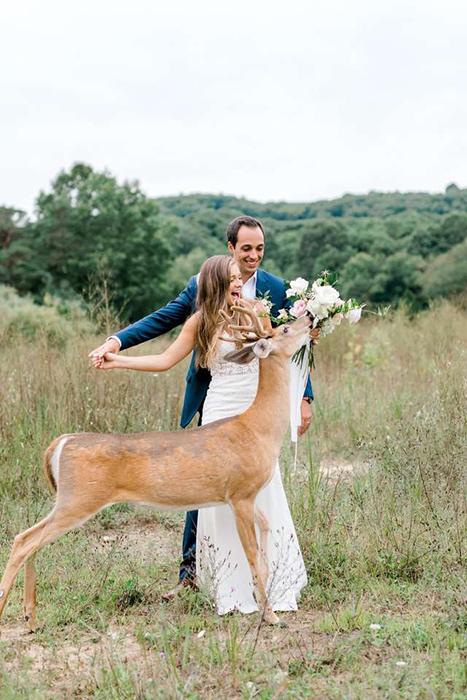 Невеста решила отдать свой букет оленю.