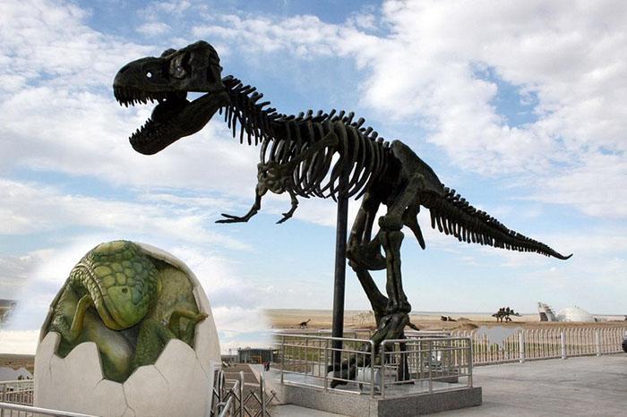 Именно в этой местности почти 100 лет назад нашли большое количество останков динозавров.