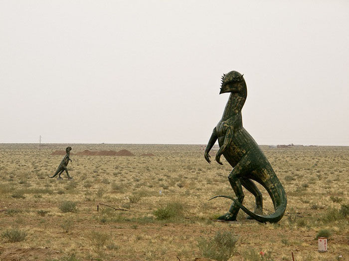 В этой местности нашли останки более 20 видов динозавров.
