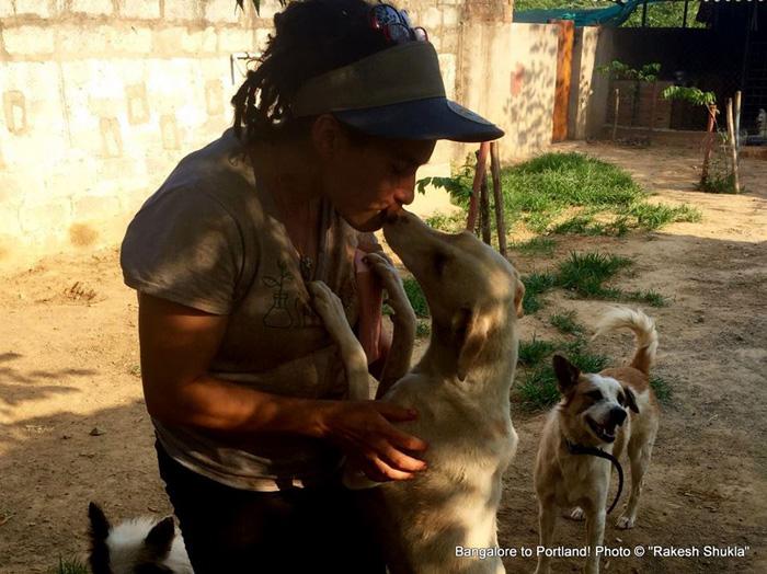 В приюте собаки чувствуют себя счастливыми. Фото: Rakesh Shukla.