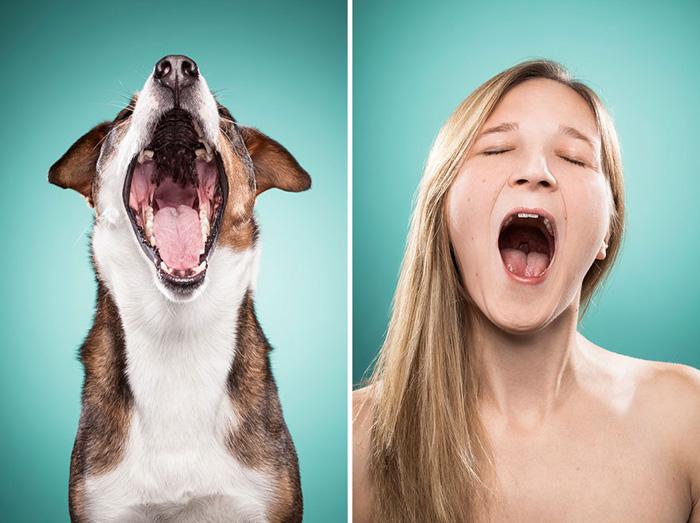 картинки эмоции людей и животных специально
