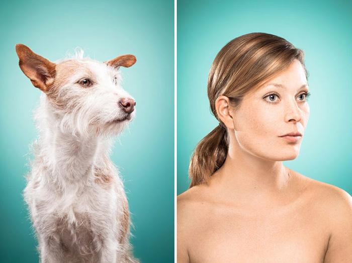 Картинки сходство животных и человека